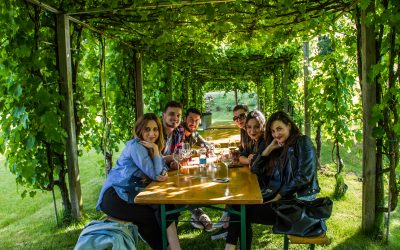 Cantine Aperte in Umbria