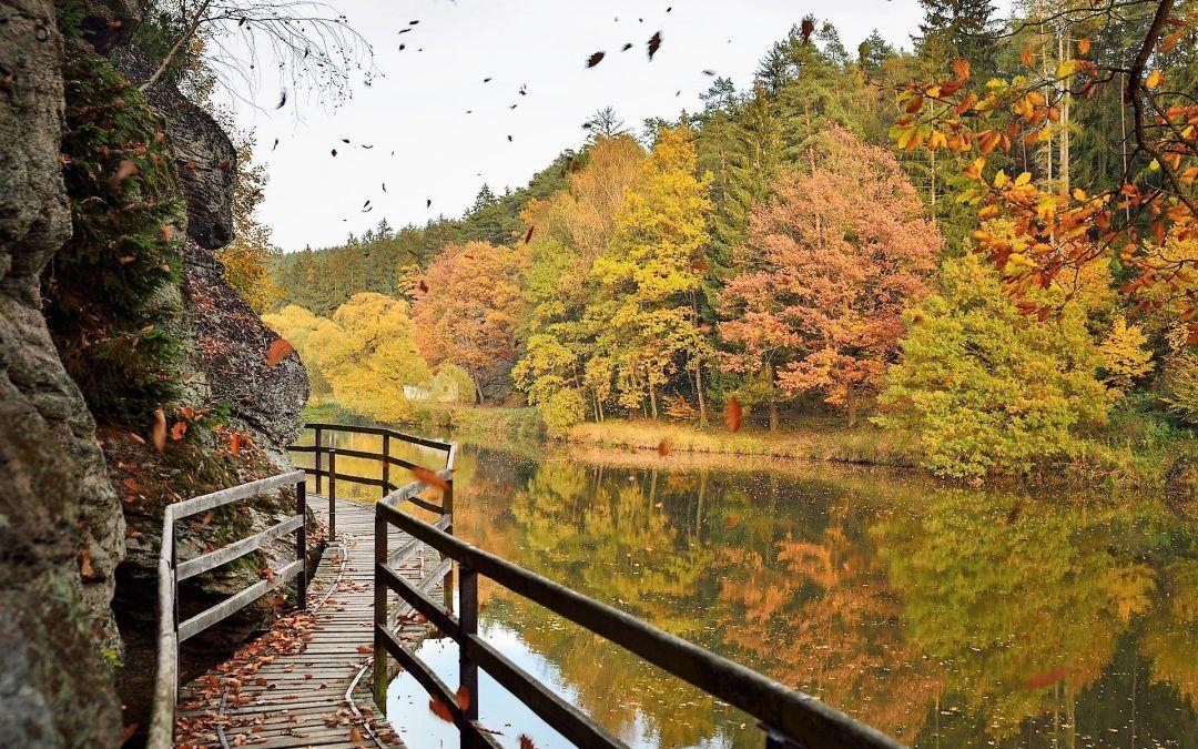 Il bellissimo sentiero della Valle di Luznice